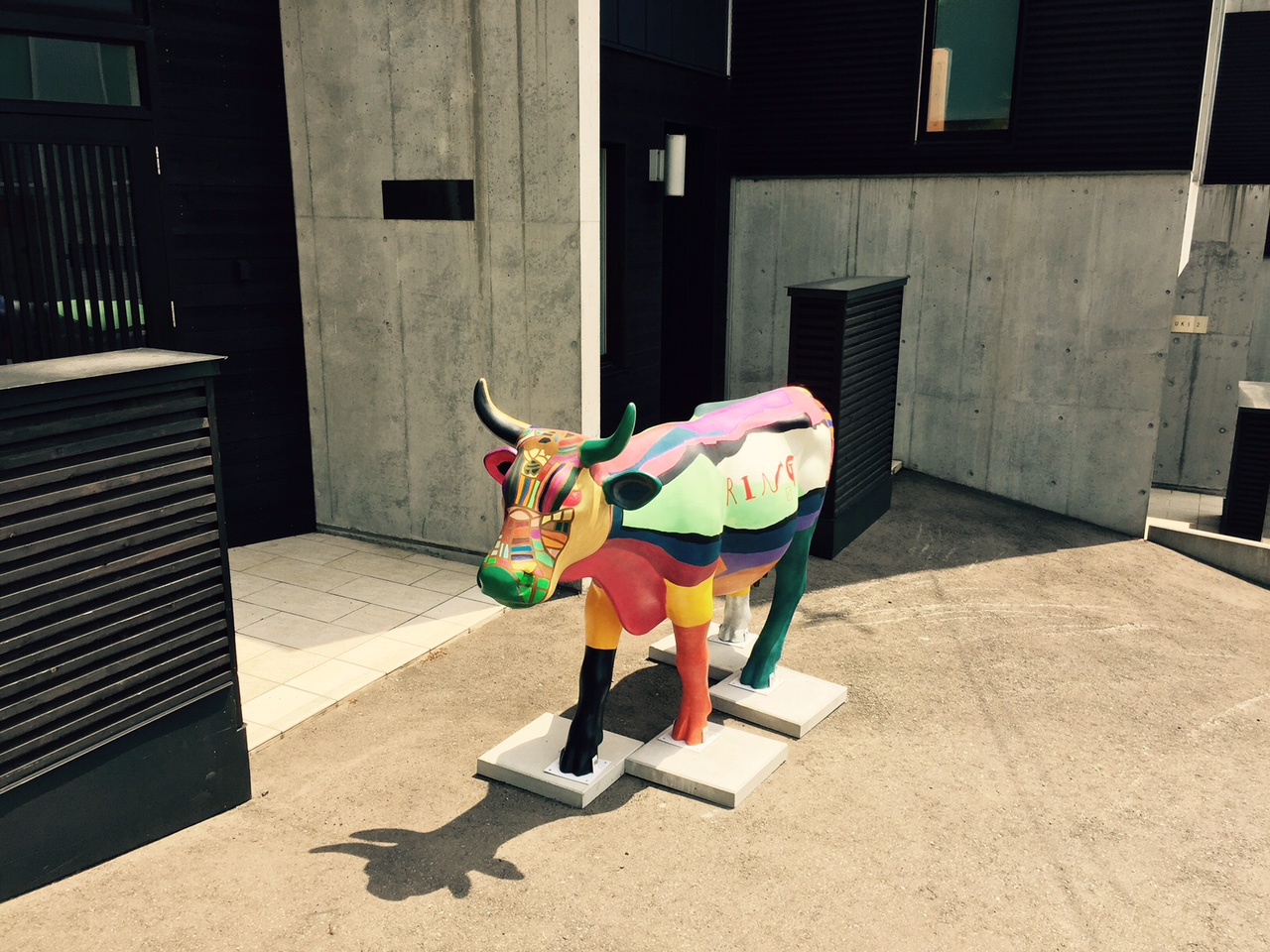 Cow Parade Comes to Niseko